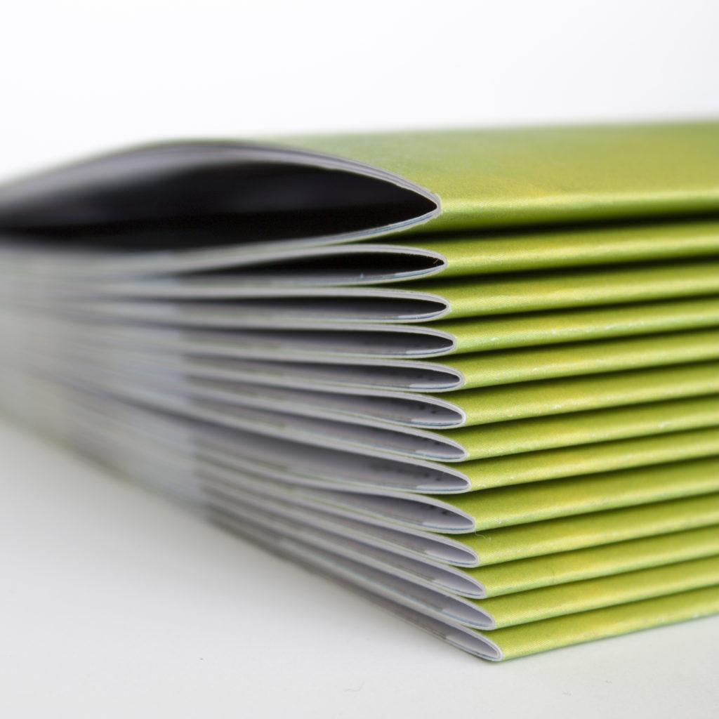 Booklets / Reviste